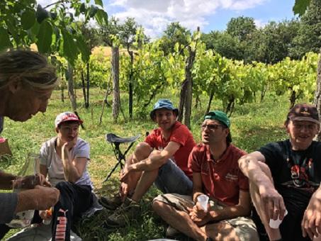 A la vigne , des ateliers champêtres appréciés.