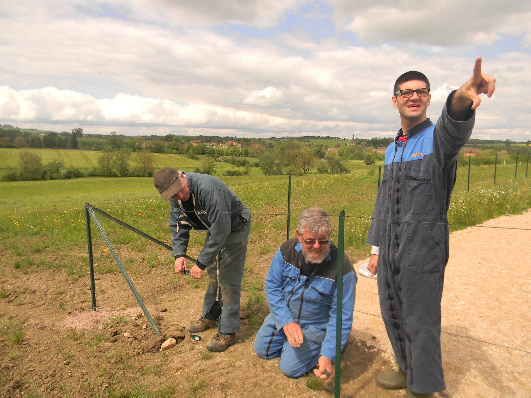 Sous les ordres de Jérémy, Pierre et Bernard s'affèrent à installer la clôture.